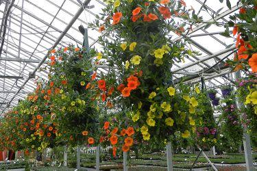 hangzakken-met-bloemen